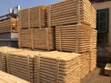 Softwood  Logs - Pine poles available