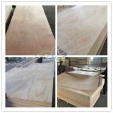 Plywood For Sale - Okoume/Pencil Cedar/Bintangor/Sapelli/Red Canarium Plywood