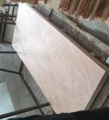 720mm/820mm/920mmx2150mm okoume door skin plywood
