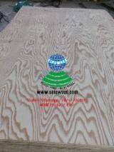 1220*2440mm China Embossed Larch Plywood