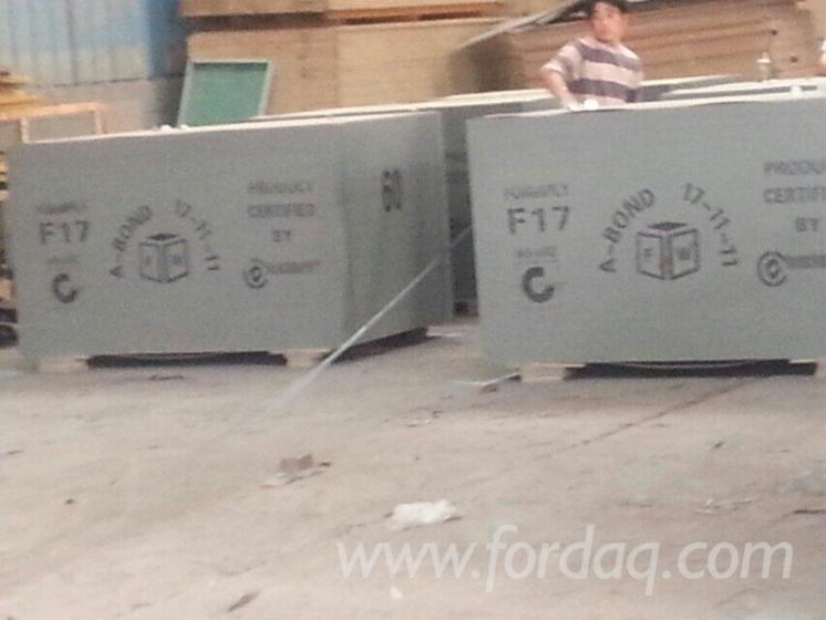 F17-Construction-Black-film-Plywood
