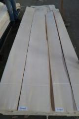 Sliced Veneer - Natural Veneer, Maple (European Common Maple), Flader