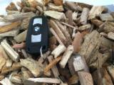Find best timber supplies on Fordaq - Wood chips from Forest