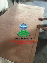 Sapelli Rotary Cut Plywood bb/cc grade with poplar core