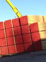 Softwood  Sawn Timber - Lumber - PEFC, 0.060 mm, Air dry (AD), Radiata Pine (Pinus radiata, insignis)(South America), Spain