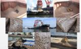 null - Wood Pellets from Australia for Export