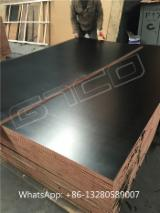 Plywood - 17mm Black film faced marine ply, shuttering formwork, construction plywood