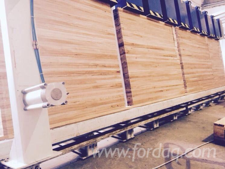Used-SORMEC--2004-Laminated-Wood-Press-For-Sale