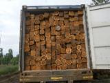 Rough Square Teak Wood, Teak, Ecuador