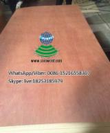BB; BB/CC grade, Red hardwood rotary cut veneered plywood for doors, cabinets and furnitures
