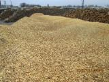 Firewood - Chips - Pellets Supplies - Conifer wood chips 10.000 m3/month available