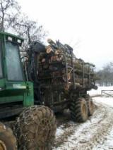 Scos - Apropiat - Prestari servicii exploatare forestiera cu forwarder