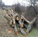 Firewood - 8+ cm,  salcam,carpen si fag, Firewood