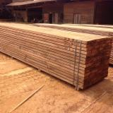 Tropical Wood  Sawn Timber - Lumber - Planed Timber - Beli - rough sawn, AD – Gabon origin