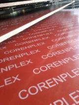 Film Faced Plywood, Red Film, Full Poplar Core, WBP Glue