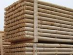 Softwood  Logs - Machine-rounded pine poles
