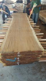 森林和原木 大洋洲  - 锯材级原木, 桃花心木