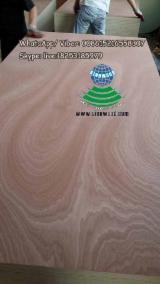 Sapelli rotary cut veneered plywood, BB; BB/CC grade, E2 glue
