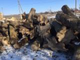null - 25 - 50 cm White Ash Industrial Logs