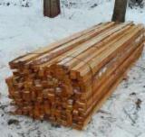 Hardwood  Sawn Timber - Lumber - Planed Timber - Alder (European Grey Alder) - Alnus Incana, Beams, --