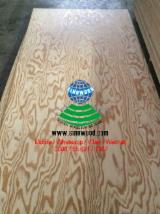 Engineered Panels China - Pine veneered mdf board