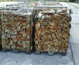 Buy Or Sell  Firewood Woodlogs Cleaved Romania - Beech (Europe) in Romania Firewood/Woodlogs Cleaved -- mm
