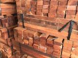 方形材, 木荚豆木