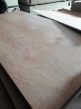 天然胶合板, 巴布亚红厚壳木