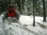 null - Forest Maintenance in Romania