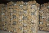 Latvia - Fordaq Online market - Premium quality Birch, Ash, Oak KD Firewood