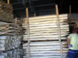 null - Douglas Fir , Fir , Nordmann Fir - Caucasian Fir -- cm stalpi/tarusi Conical Shaped Round Wood Romania