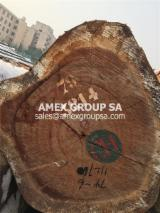 Tropical Wood  Logs - Sapelli/Sapele logs (Entandrophragma cylindricum)