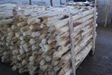 Hardwood  Logs For Sale Poland - Pfähle o/Rinde, Acacia