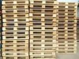 Romania Pallets And Packaging - New Pallet Romania