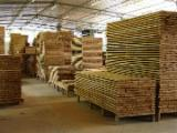 Tropical Wood  Unedged Timber - Flitches - Boules - Teak-deckings from Brazil