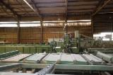 Used ESTERER BNK-200-6 1995 Circular Saw For Sale in Germany