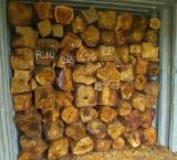 Tropical Wood  Logs - Africa and Asia rosewood - old wood