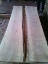 Ash 32mm Unedged ABC KD