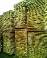 Hardwood  Unedged Timber - Flitches - Boules - Ash (White) Boules in Romania Vaslui