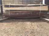 null - Douglas Fir , Fir , Nordmann Fir - Caucasian Fir Firewood/Woodlogs Cleaved -- mm