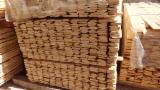 Softwood  Sawn Timber - Lumber - Grade F for packaging purposes; Softwood; KD; origin - Russia