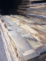 Hardwood  Sawn Timber - Lumber - Planed Timber - Air Dry 14% Sweet Chestnut planks
