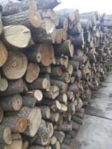 Aspen, White Poplar  Hardwood Logs - Aspen Firewood Logs
