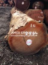 Tropical Wood  Logs - Bosse logs (Guarea Cedrata, laurentii, thompsonii)