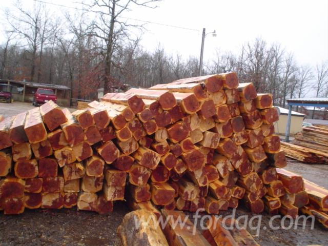 For Export/Sale Eastern Red Cedar Logs/Cants from USA for