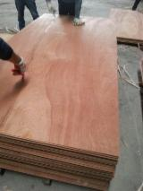 Plywood Other Certification For Sale China - sapelli plywood okoume plywood