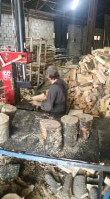 Wood And Timber Trade Forestry Job - Personal Ambalare Lemn De Foc Romania