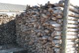Hardwood  Logs Poland - Pfähle o/Rinde, Acacia