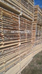 White birch lumber from Latvia