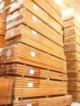 Tropsko Drvo  Trupci - Za Rezanje, Iroko (Mvuli, Kambala, Semli, Rokko), Cameroun, Congo